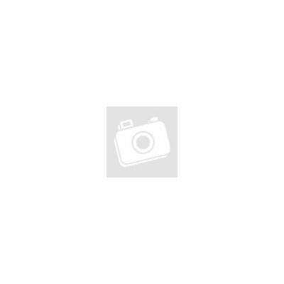 Herdegen váltakozó nyomású antidecubitus matrac